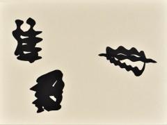 Sinus-Cuts-56x42_04